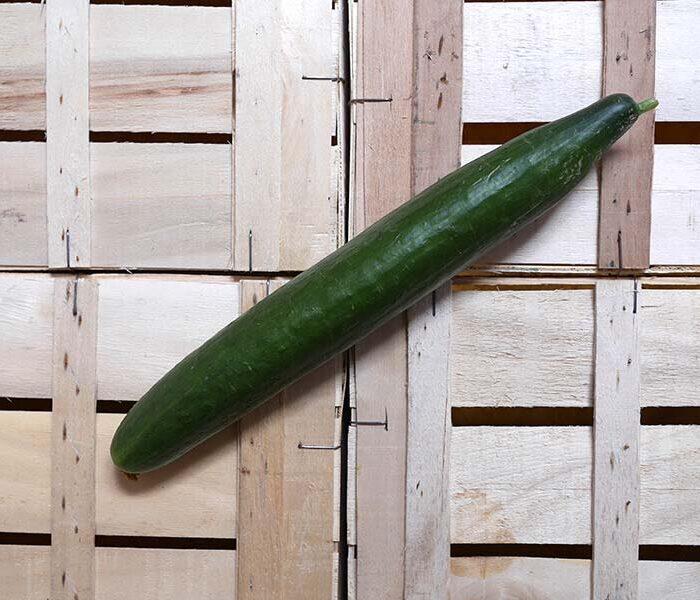 Concombre – la piece