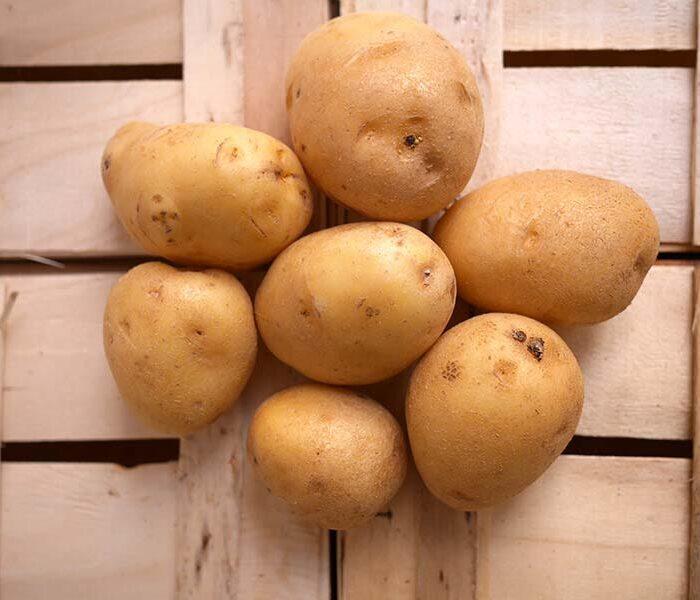 Pomme de terre Agata (lavee) – Cal. 50+ – le kilo