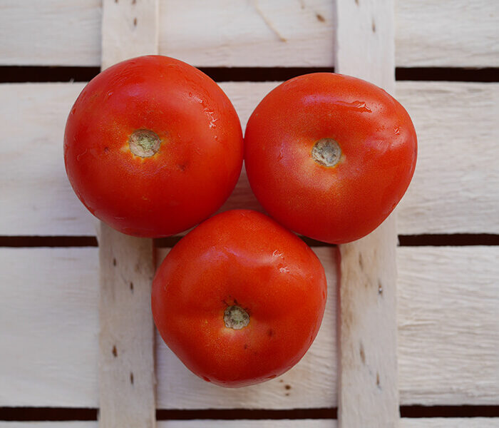 Tomate ronde – les 3 pieces