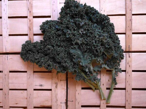 Chou-Kale