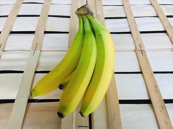 banane-antilles-planteurs