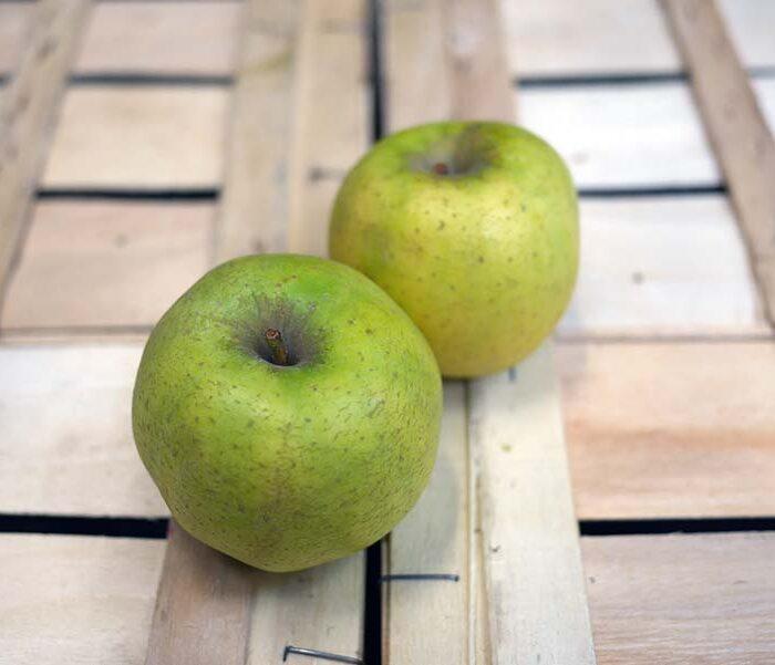 Pomme Chanteclerc – Cal. 135/170 – les 3 pieces