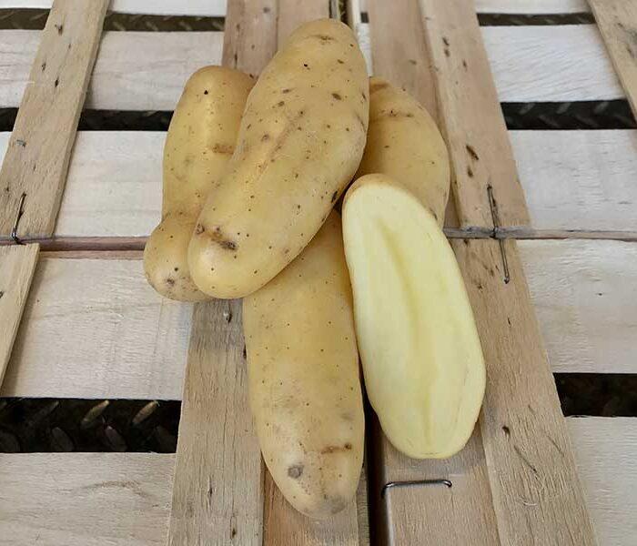 Pomme de terre Delicatesse primeur – Cal. grenaille – les 250 g