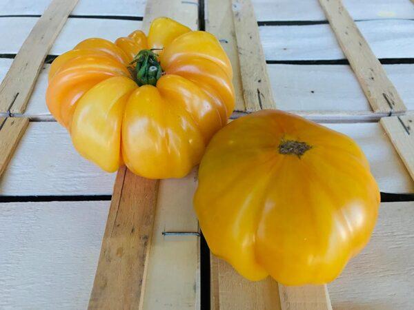 tomate-ananas