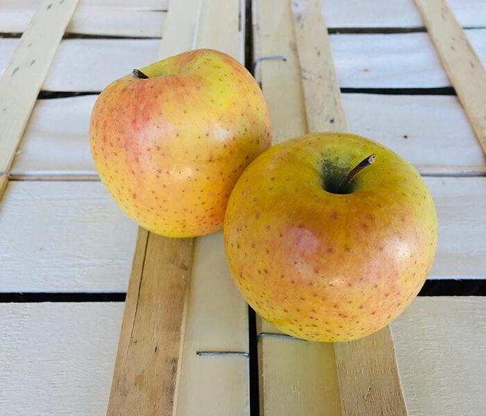 Pomme Gradiyel (Rosee du Pilat) – Cal. 170/200 – les 3 pieces