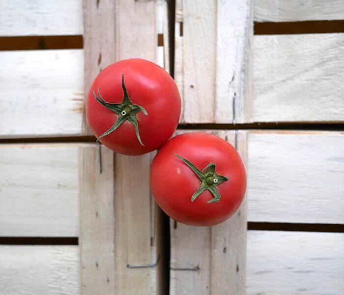 Tomate Rose de Berne (pleine terre) – les 2 pieces