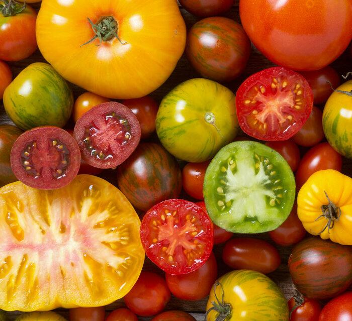 Tomates à l'ancienne