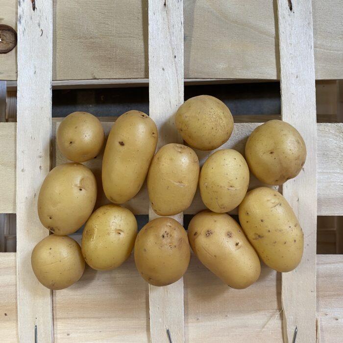 Pomme de terre conso (lavee grenaille) – les 500g