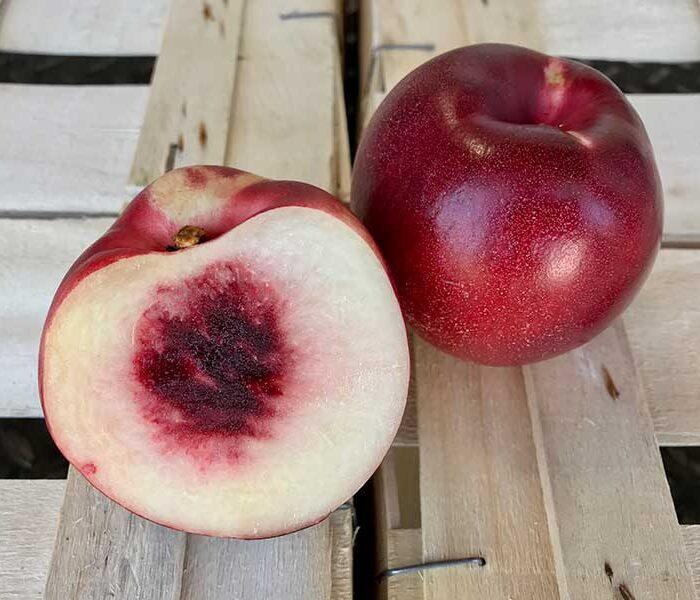 Nectarine blanche – Cal. A – les 3 pieces